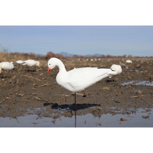 SkyFly Sentry Snow Goose Fullbody Decoys