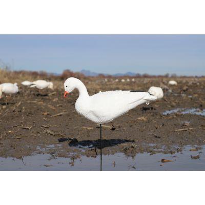 Sentry Snow Goose Fullbody Decoys